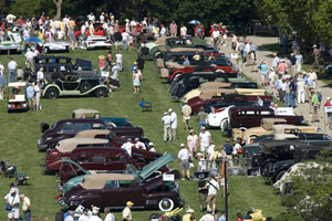 concours d'elegance display of cars